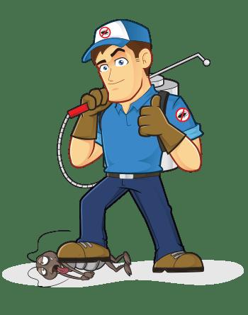 pestaway-melbourne-pest-control
