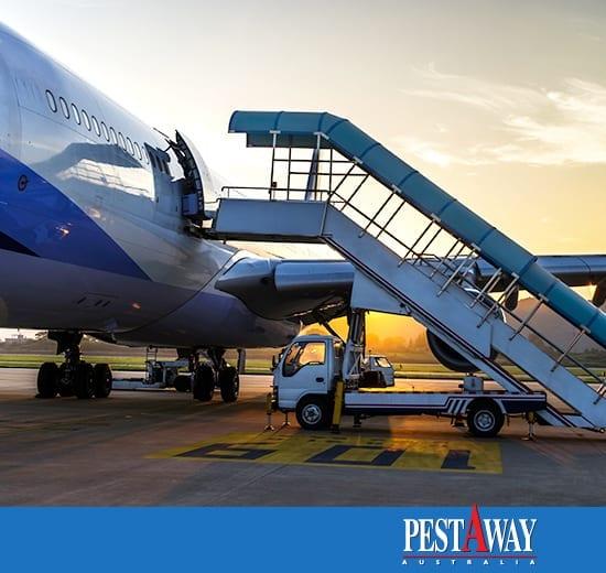pestAway-Fumigation-Services