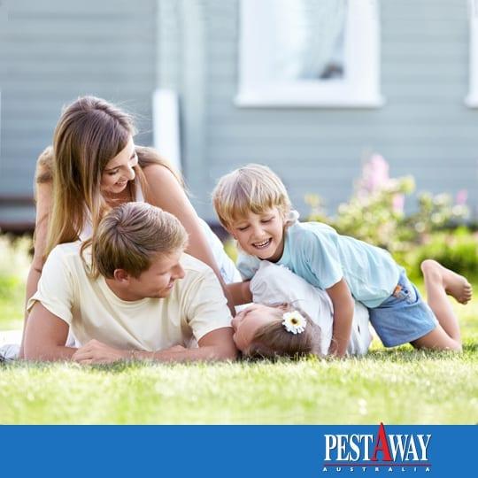 pestAway-pest-control