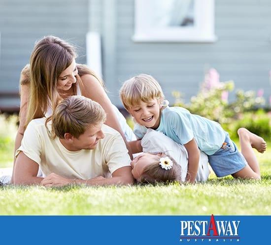 PestAway-Home-Pest-Control