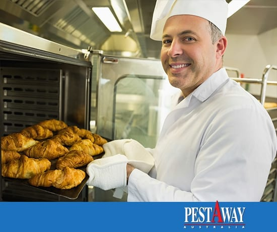 PestAway-Pest-Control-Food