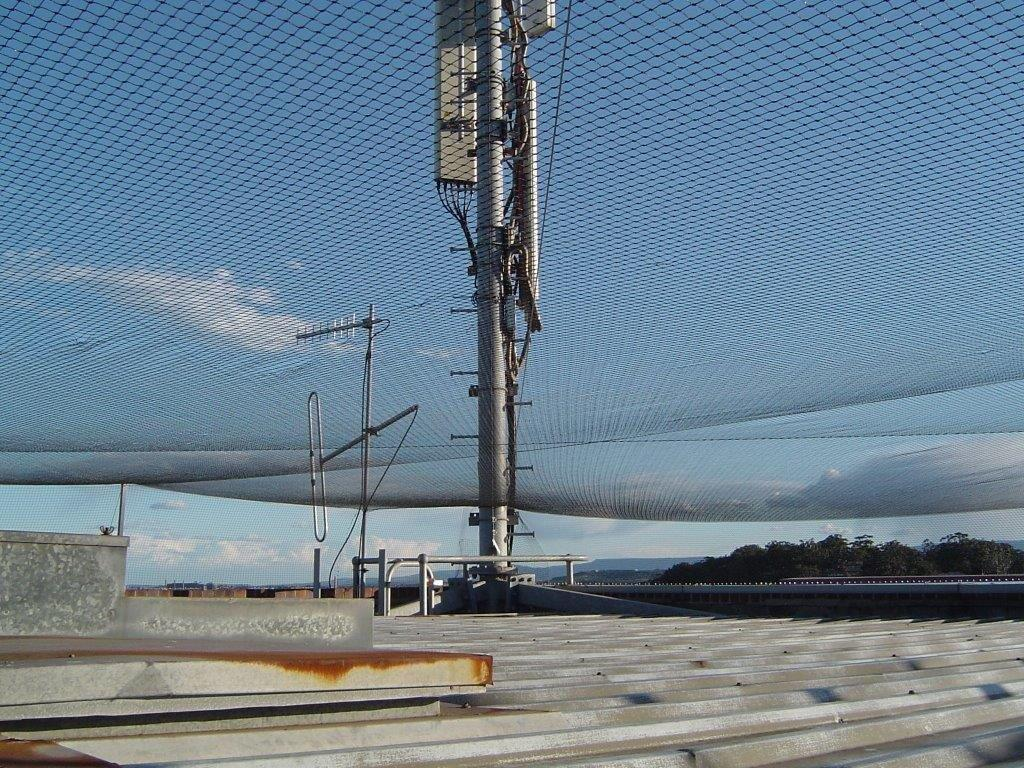 bird-control-netting